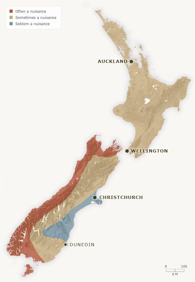 Sandfly Map NZ